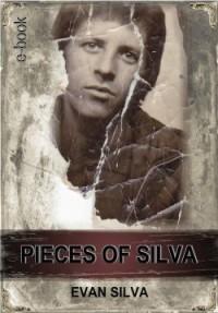 Pieces Of Silva