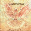 Product Image: James Vincent - Waiting For The Rain (Digitally Remastered)