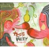 Product Image: Tess Wiley - Superfast Rock'n' Roll Played Slow