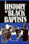 Leroy Fitts - A history of Black Baptists
