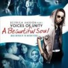 Product Image: Deitrick Haddon, Voices Of Unity - A Beautiful Soul