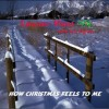 Product Image: Luanne Hunt - How Christmas Feels To Me