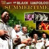 Product Image: Black Umfolosi - Summertime: Best Of Black Umfolosi