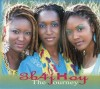 Product Image: 3b4jHoy - The Journey 1