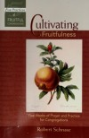 Robert C Schnase - Cultivating Fruitfulness: Five Weeks of Prayer and Practice for Congregations