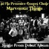 Product Image: In His Presence Gospel Choir - Marvelous Things