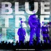 Product Image: Bluetree - Live At Exchange Church