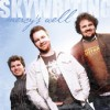 Product Image: Mercy's Well - Skywriting