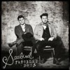 Product Image: Seabird - Troubled Days