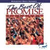 Product Image: Promise Keepers - The Best Of Promise Keepers