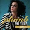 Product Image: Plumb - Need You Now (Remixes)