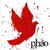 Product Image: Phao - Phao