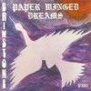 Product Image: Brimstone - Paper Winged Dreams (re-issue)