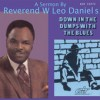 Product Image: Rev W Leo Daniels - Down In The Dumps With The Blues
