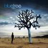 Product Image: Bluetree - God Of This City (Independent)