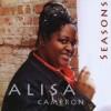 Product Image: Alisa Cameron - Seasons