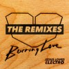 Jesus Loves Electro - Burning Love: The Remixes