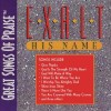 Great Songs Of Praise - Exalt His Name