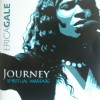 Product Image: Erica Gale - Journey Spiritual Warfare