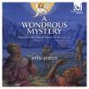 Product Image: Stile Antico - A Wondrous Mystery
