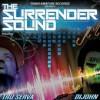 Product Image: Tru-Serva & DiJohn - The Surrender Sound