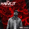 Product Image: RP Tha Chozen 1 - The Harvest