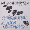 Product Image: David Ripley - Turning Up Stones