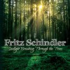 Product Image: Fritz Schindler - Sunlight Breaking Through The Trees