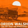 Product Image: Orion Walsh - Love Isn't What You Would Expect