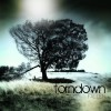 Product Image: Torndown - Fallen