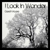 Product Image: Gareth Hoare - I Look In Wonder