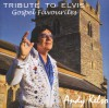 Product Image: Andy Kelso - Tribute To Elvis: Gospel Favourites