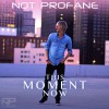 Product Image: Not Profane - This Moment Now