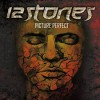 12 Stones - Perfect Picture