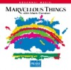 Product Image: Mark Condon - Marvellous Things (Split Trax)