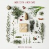 Product Image: Meredith Andrews - Receive Our King