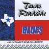 Product Image: Theodore A Henning II, Jackie Odum, Edgar Coleman - Texas Roadside Blues