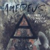 Product Image: AmeDeus - Assemble Dismantle Repair