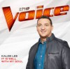 Product Image: Kaleb Lee - It Is Well With My Soul (The Voice Performance)