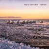 Product Image: Roland Buhlmann - Bailenas