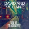 Product Image: David & The Giants - What Are You Waiting For?