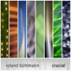 Product Image: Roland Buhlmann - Crucial