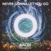 Product Image: Binley - Never Gonna Let You Go (ftg Brandon Gill)