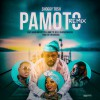 Product Image: Shoggy Tosh - Pamoto (Remix) (ftg Annette Bee, Boris One Spitter & Massin)
