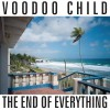 Product Image: Voodoo Child - The End Of Everything