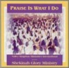 Product Image: Shekinah Glory Ministry - Praise is What I Do