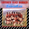 Product Image: Ladysmith Black Mambazo - Inala
