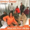 Product Image: James Grear & Company - What Will Your Life Say