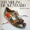 Product Image: Salmond & Mulder - Stumbling Heavenward