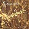 Product Image: Paul Furlong - Someday